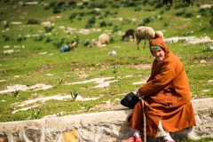 201802_Morocco_Fes_photo-frances-scanlon-04580_sheep herder*