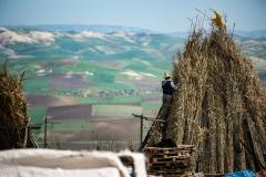 201802_Morocco_Fes_photo-frances-scanlon-04603