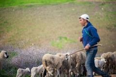 201802_Morocco_Fes_photo-frances-scanlon-04622
