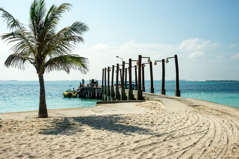 201803_Maldives_photo-frances-scanlon-01921