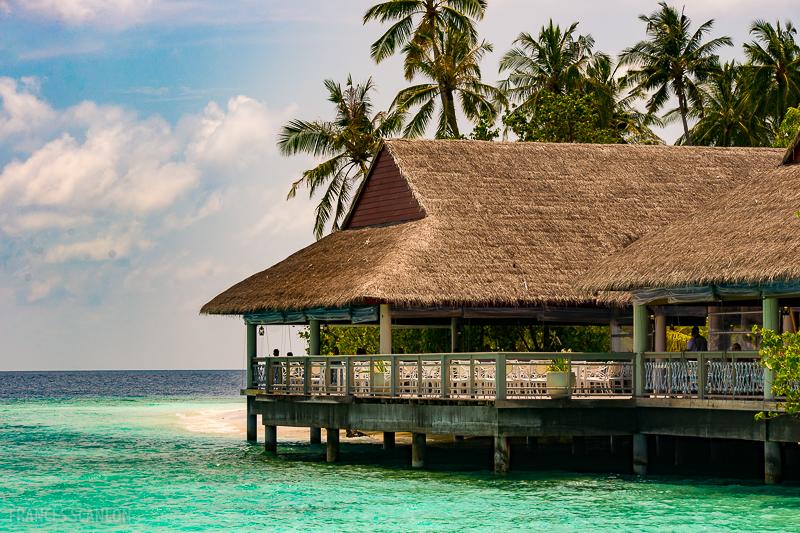 201803_Maldives_photo-frances-scanlon-02383