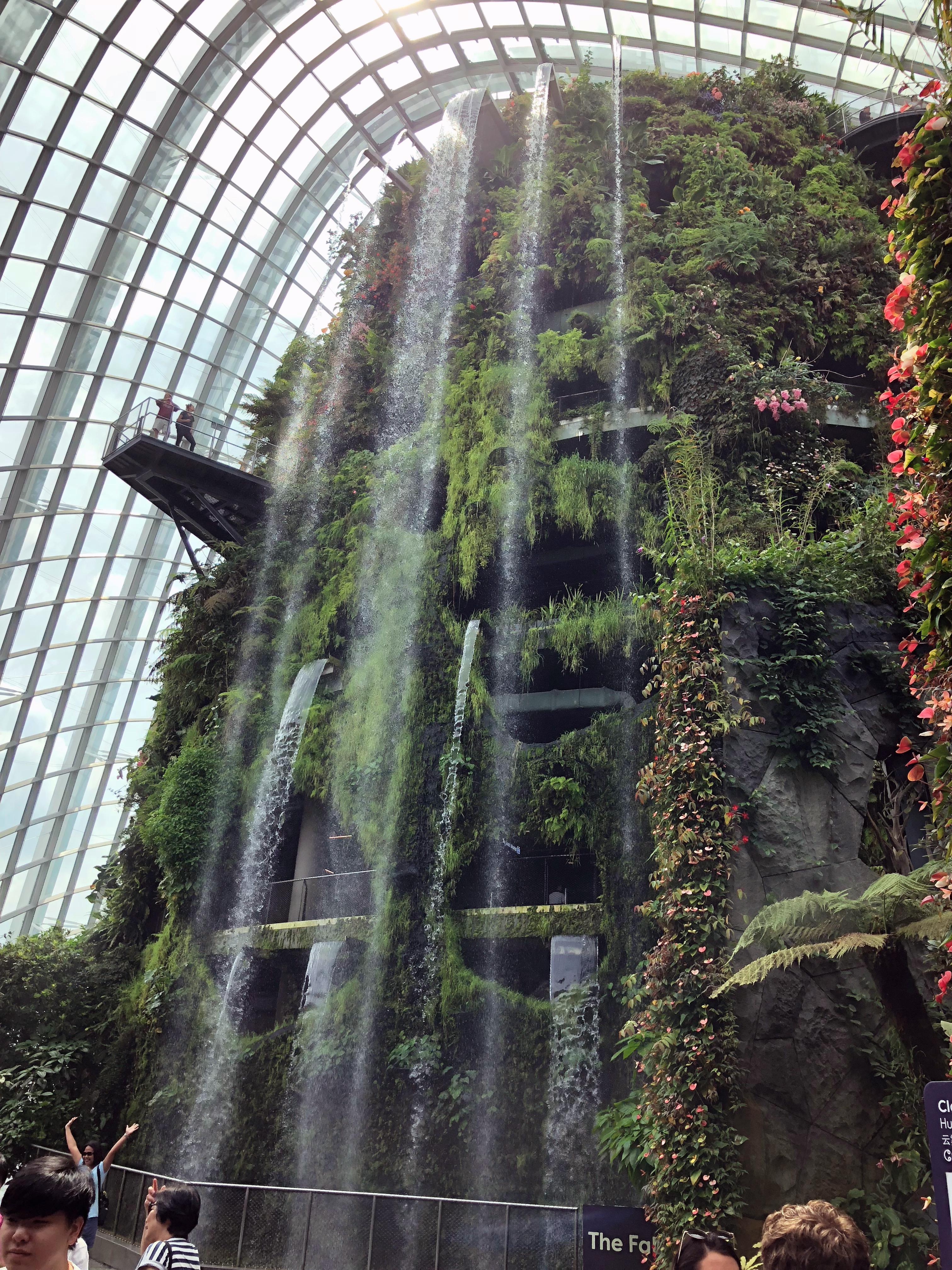 IMG_Singapore_0479