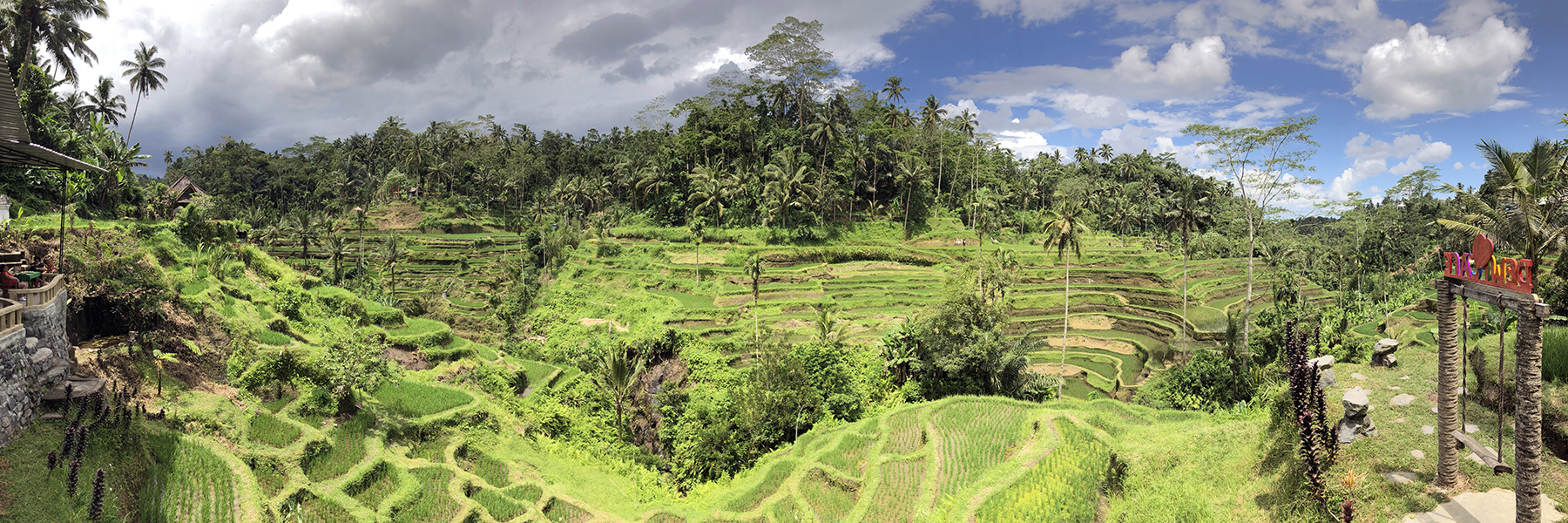 IMG_0557_rice terrace*_pano-3-1_lr
